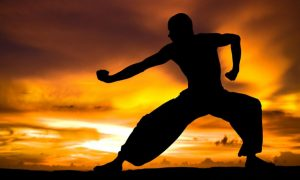gimnasio artes marciales Móstoles
